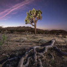 A Fragile Planet Photo Exhibition at The Haven by Jacada Travel