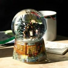 DIY: How to Build a North Pole Terrarium