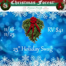 ChristmasForest.com 25″ Holiday Swag