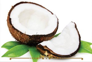 Coconut Scented Candles