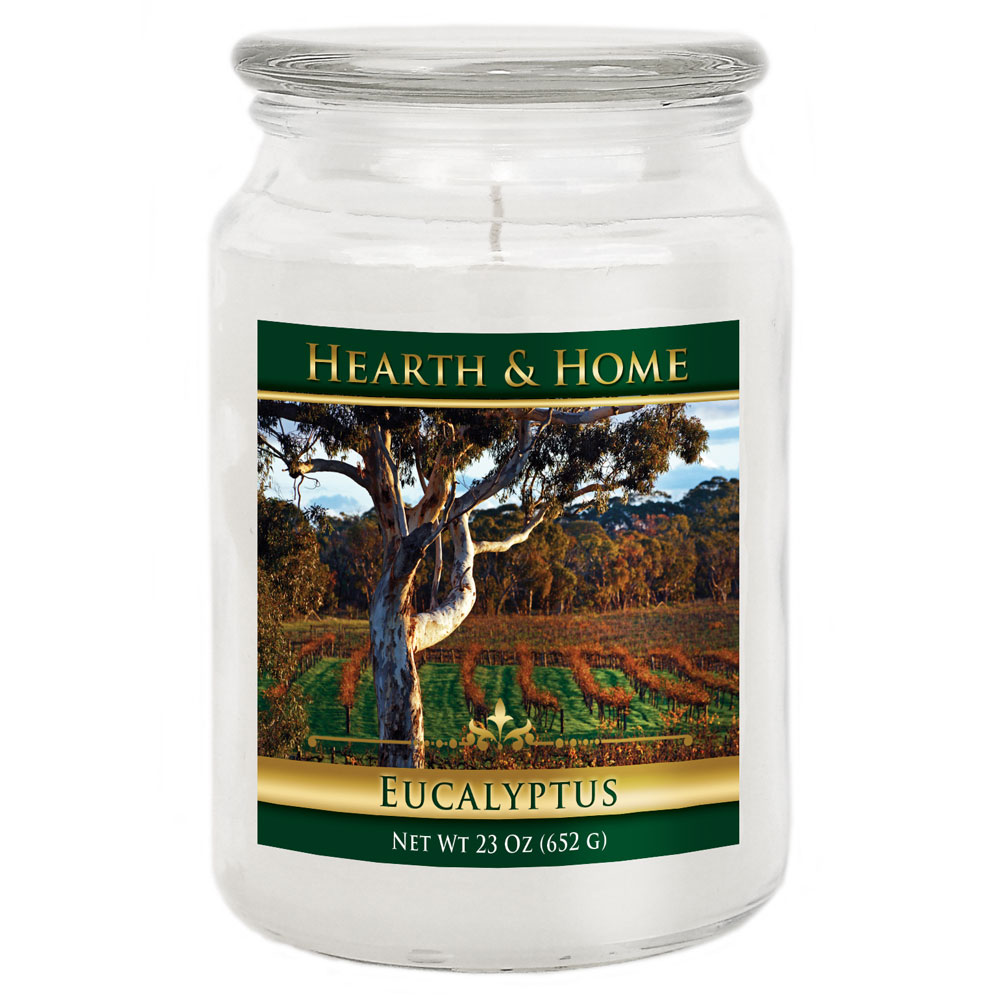 Eucalyptus - Large Jar Candle
