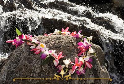 Hawaiian Escape