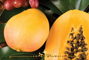 Mango Papaya Scented Candles