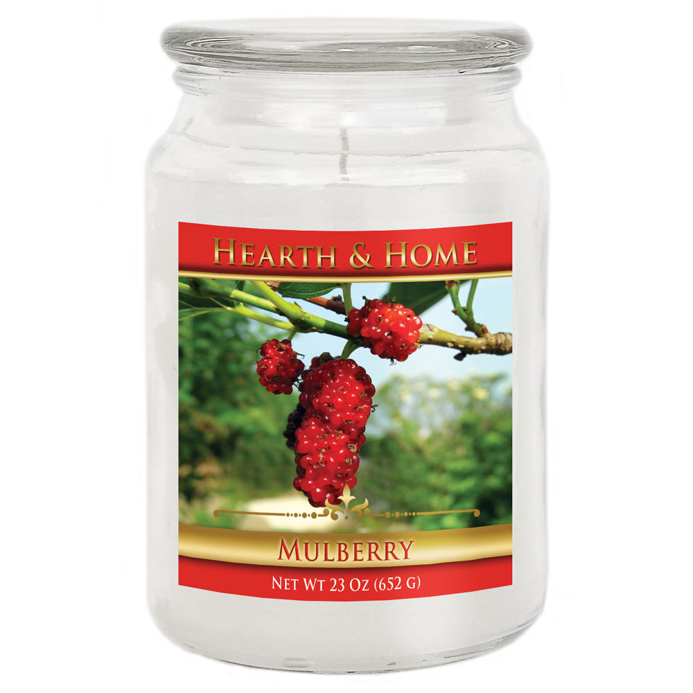 Mulberry - Large Jar Candle