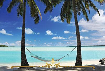 Pina Colada Paradise
