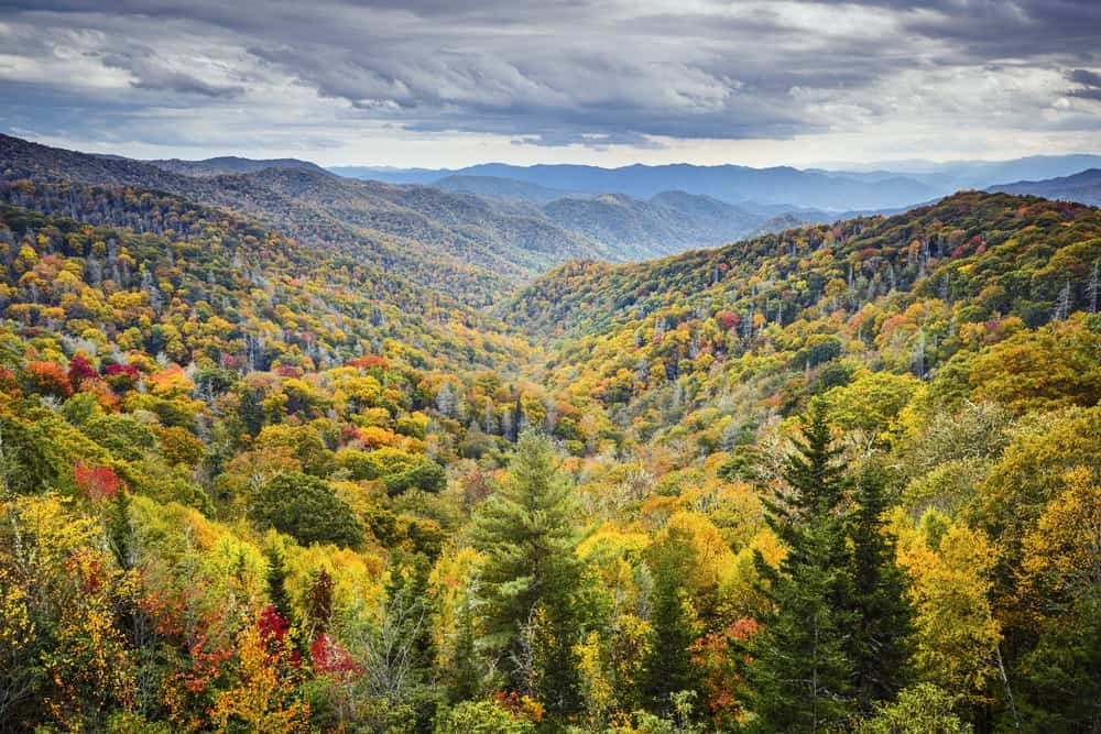 Fall In The Smokies Wallpaper Top 3 Reasons To Stay In Gatlinburg Cabins In The Fall