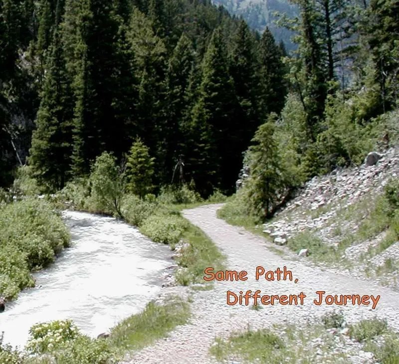 A path by a river with the title Same Path, Different Journey
