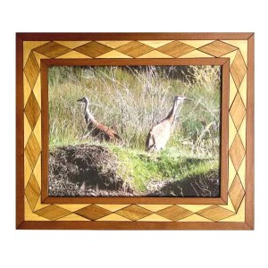 Sand hill cranes photograph in handcrafted diamond pattern hardwood frame.