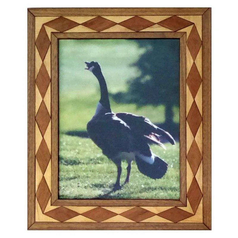 Canadian goose photograph in handcrafted hardwood frame.