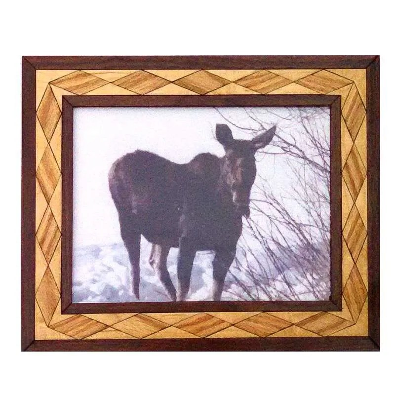 Female moose photograph in handcrafted hardwood frame.