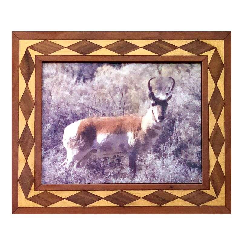 Antelope portrait in handcrafted hardwood frame.