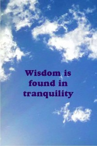 Wisdom is found in tranquility.