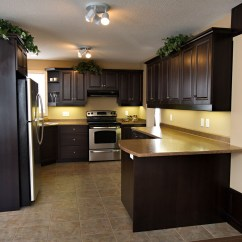 Kitchens In New Homes Kitchen Faucet With Pull Down Sprayer Norwich Kitchener Waterloo Ayr Woodstock