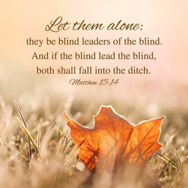The Blind Leading the Blind - Matthew 15:14 - Bible Verse of the Day