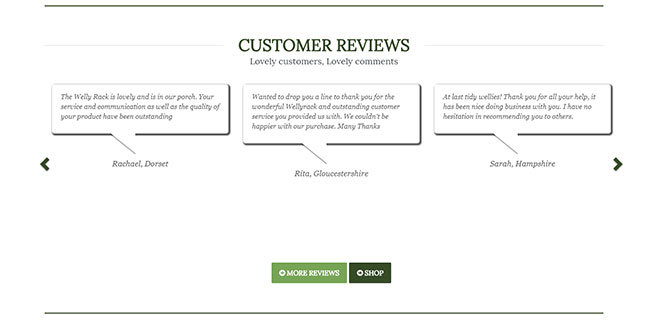 Screenshot of customer reviews on the Wellyracks site