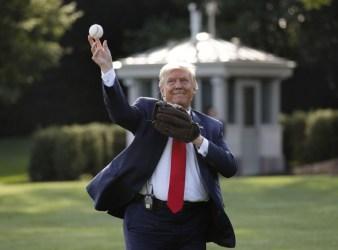 Donald Trump New York Yankees