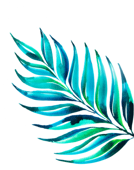 watercolor tropical leave by heartmade