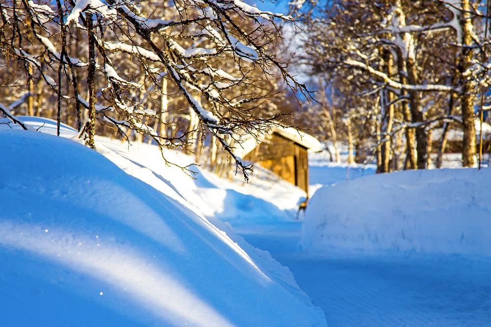 glitter snow winter norway