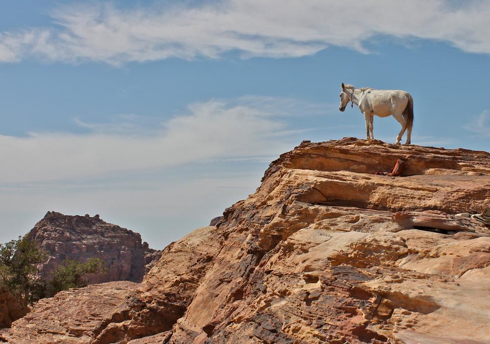 Sacrifice rock Petra, Jordan
