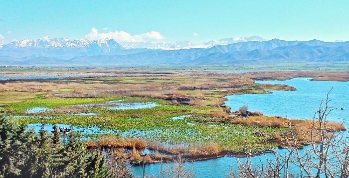 Zarivar Lake Marivan Kurdistan Iran