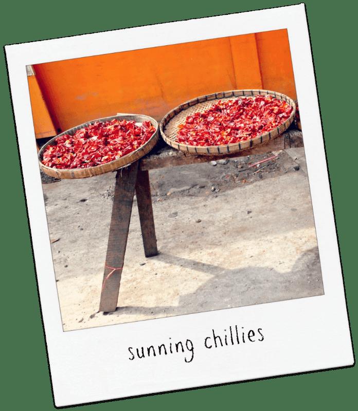 chillies sun chiang mai thai food