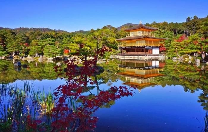 Golden Temple Fall Kyoto