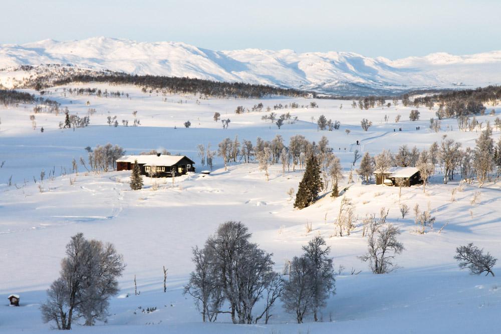 Rauland Telemark Norway
