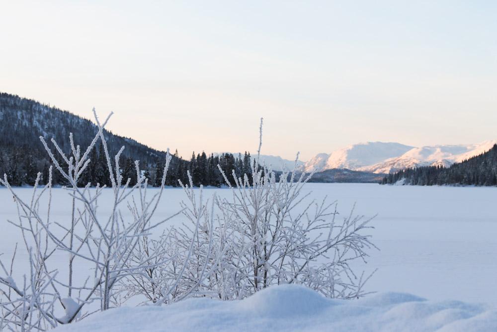 snow Christmas Norway