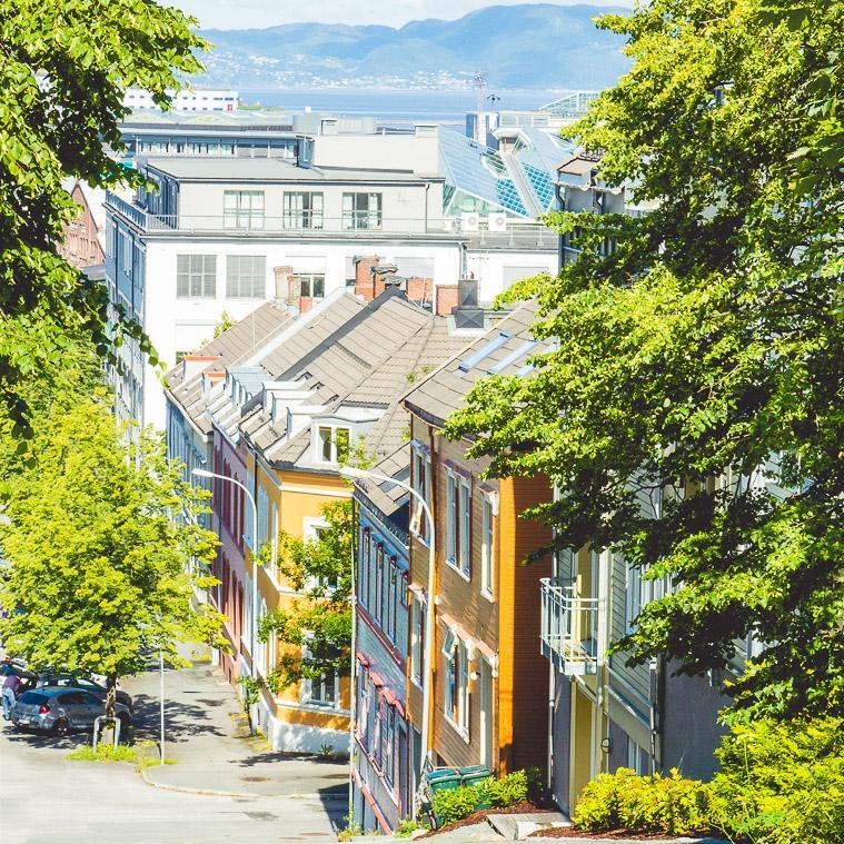 Møllenberg, Trondheim