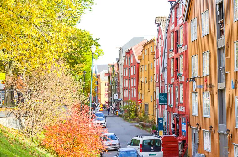 fall colors Trondheim Norway