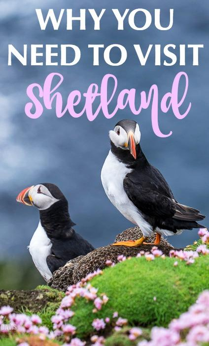 Travel to Shetland Islands Scotland