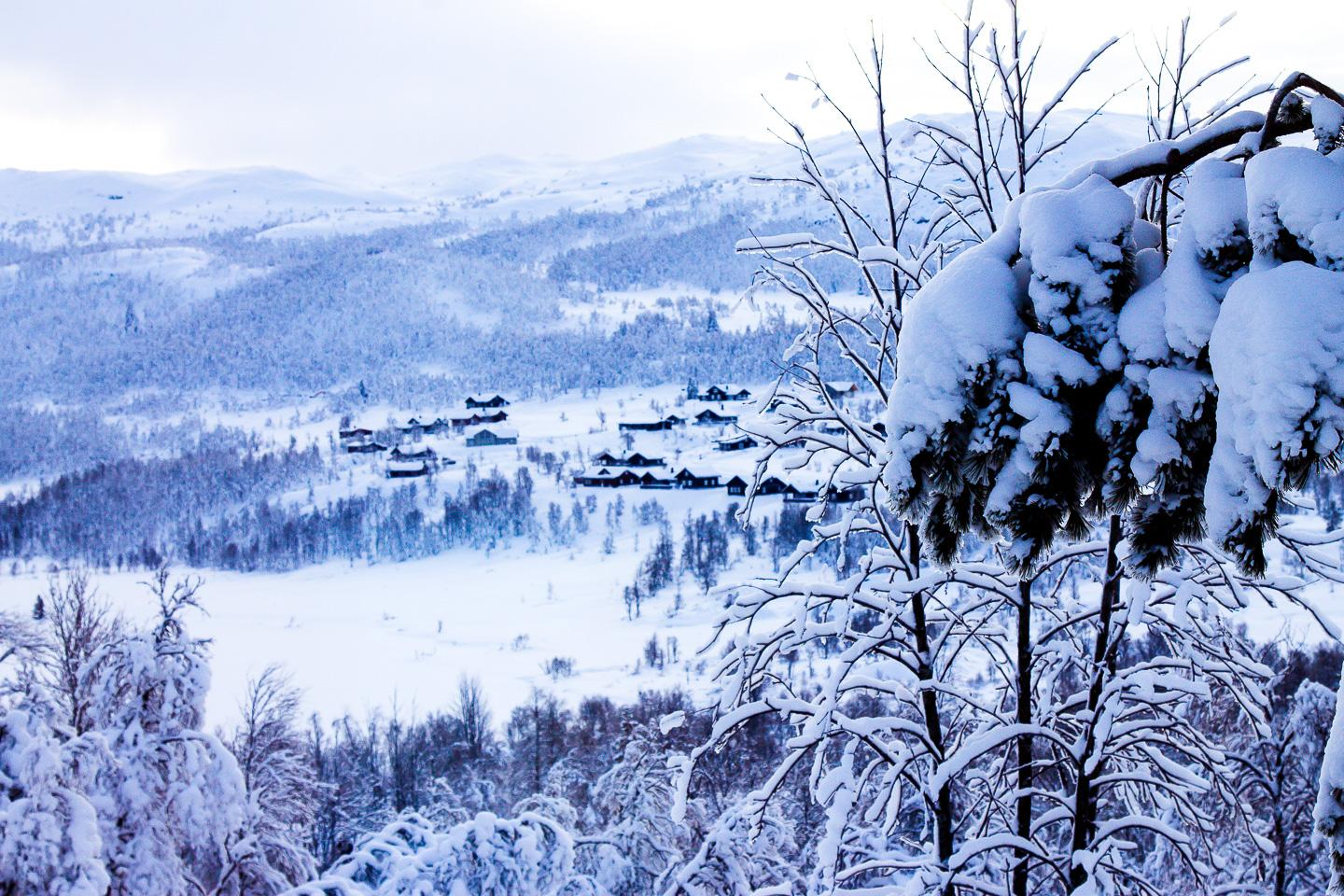 Norway. How to live in the snowy outback 76