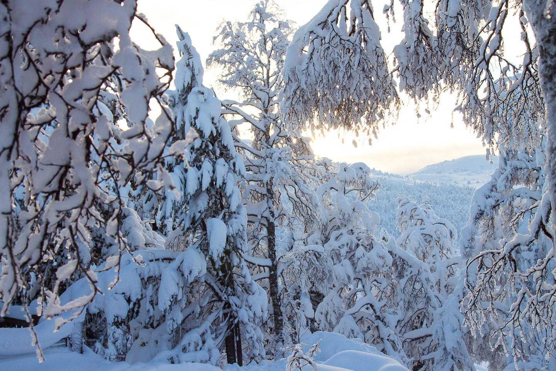 cabin Rauland Vinje Norway