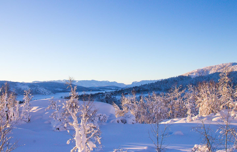 Vinje Telemark Norway winter