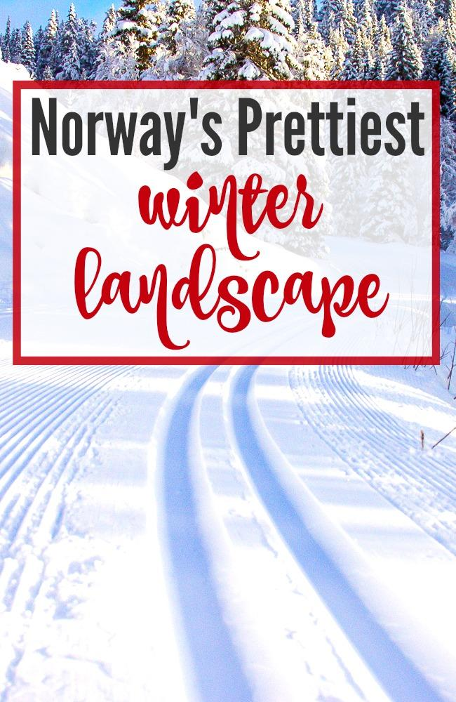 Want to see Norway in all its winter glory? Travel to Rauland, a mountain town in Telemark with some of Norway's prettiest winter views. Click through for photos!