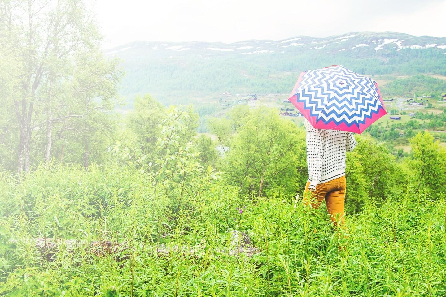 travel norway on a budget transportation