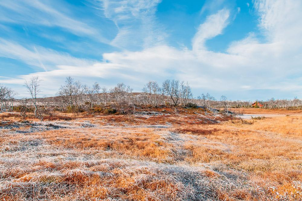 autumn in rauland telemark norway mountains