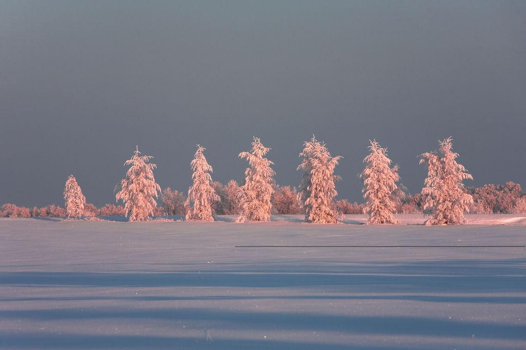 visit estonia winter snow