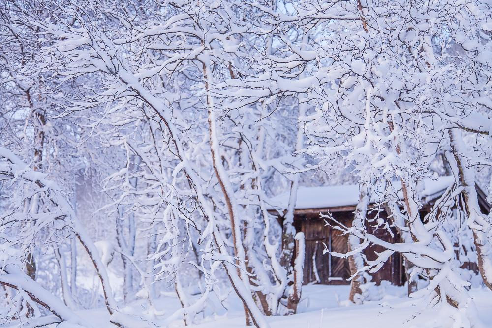 winter norway snow outhouse cabin