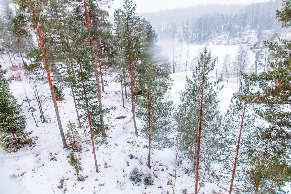 hiking through nuuksio national park espoo finland in winter snow
