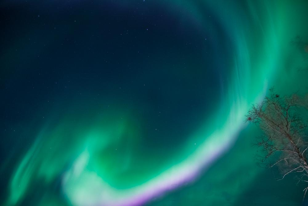 northern lights green and pink photo