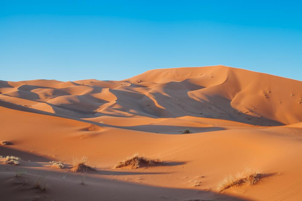 sahara desert camel trek tour merzouga morocco sand dunes