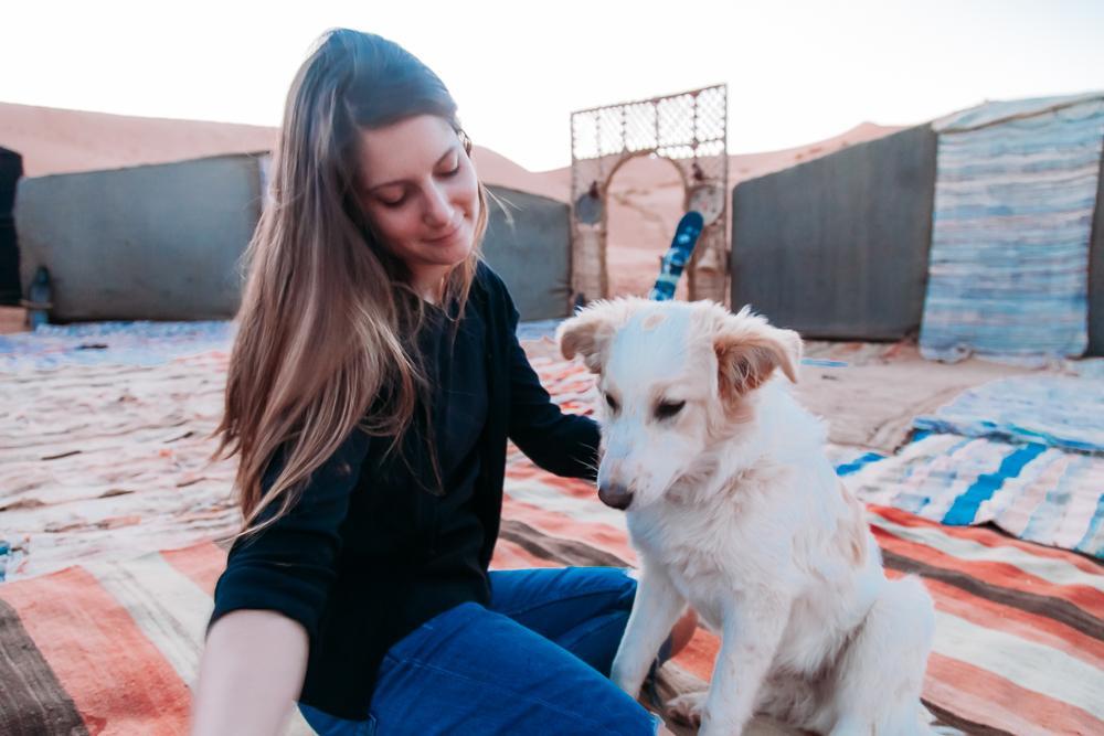 sahara desert camp glamping morocco