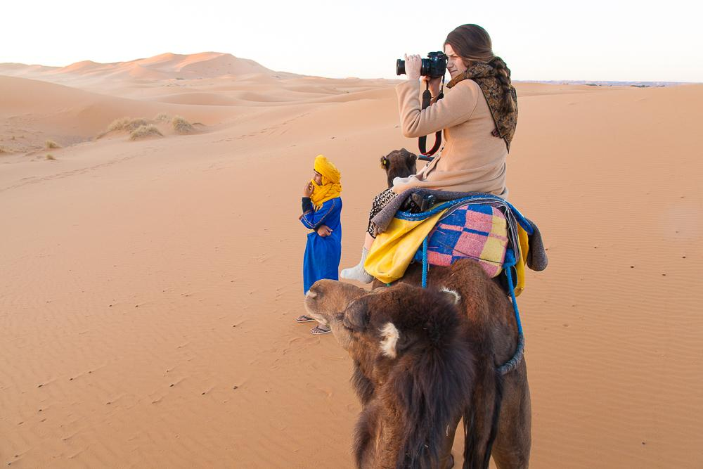 sahara desert morocco camel sunrise photo