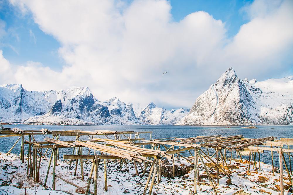 hamnøy reine, lofoten norway winter march snow