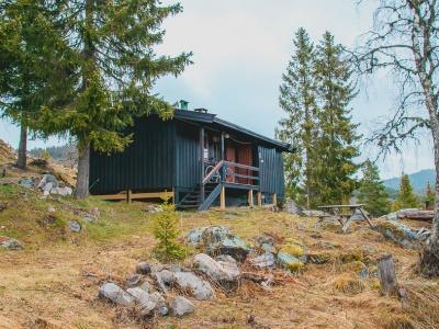 Heart My New Cabin