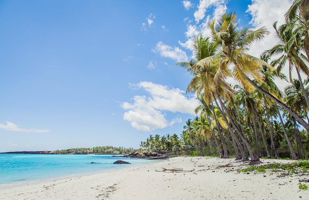 grande comore beach northern comoros