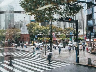 Top 20 Best Things to Do in Tokyo, Japan
