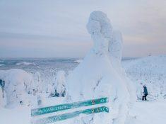 ruka ski resort view snowy trees at sunset