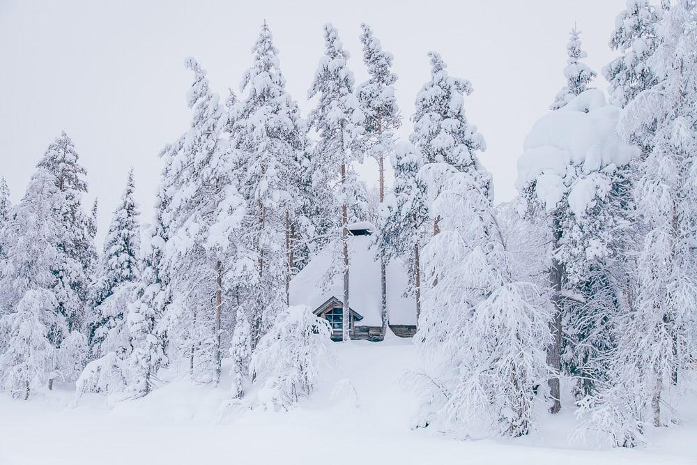 finnish sauna house snow winter trees
